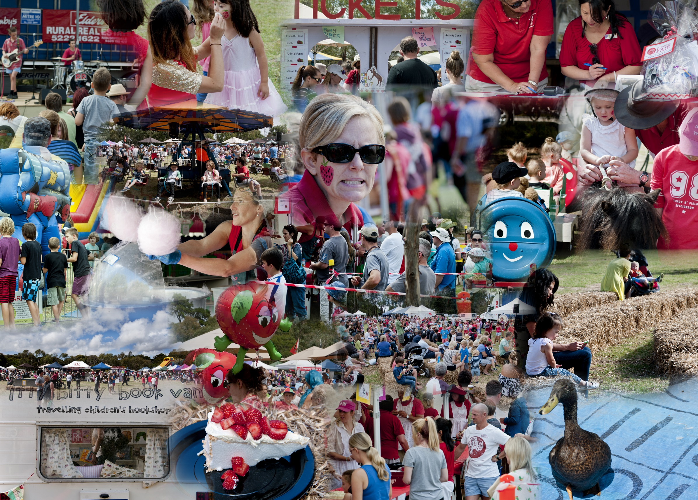 Strawberry Fair 2014